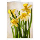 Yellow Spring Daffodils Bouquet Greeting Card