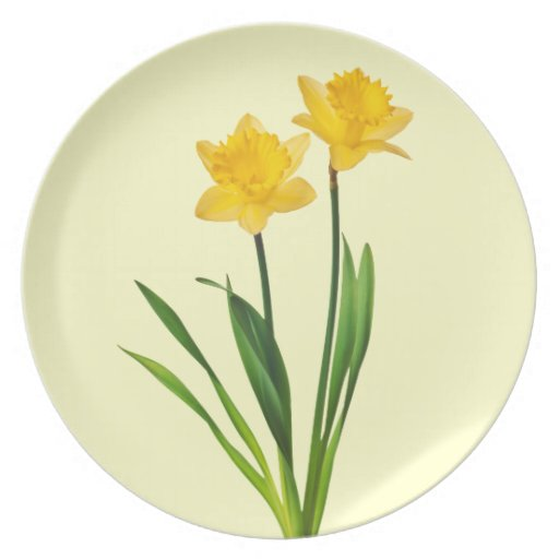 Yellow Spring Daffodils - Daffodil Template Party Plates
