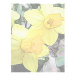 Yellow Spring Daffodils Personalized Letterhead