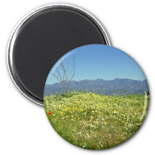 yellow Spring field in the mountains of Cyprus flo Magnet