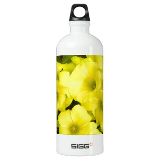 Yellow spring flowers in the garden aluminum water bottle