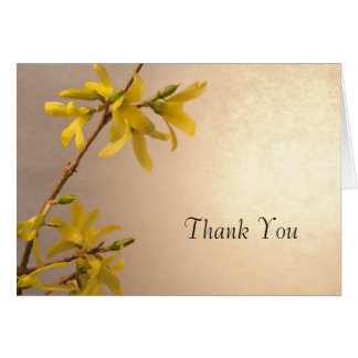 Yellow Spring Forsythia Thank You Note Greeting Cards