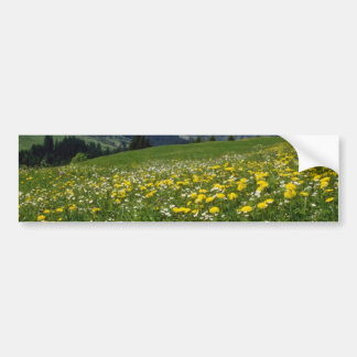 yellow Spring in the mountain flowers Bumper Stickers