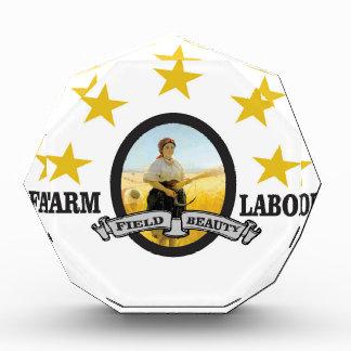 yellow star farm labor award