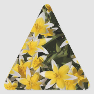 Yellow Star like white tip flowers Triangle Sticker
