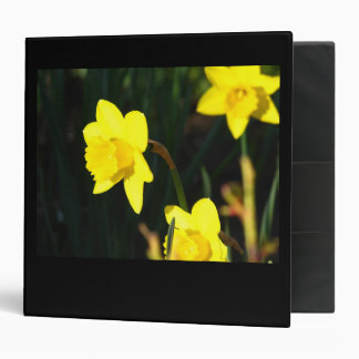 Yellow Staring Binder