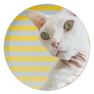 Yellow Stripe White Devon Rex Cat Plate