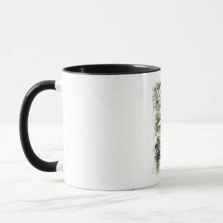 Yellow striped butterfly short mug