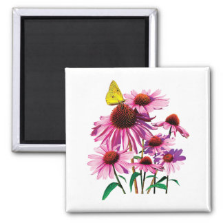 Yellow Sulphur Butterfly on Coneflower Refrigerator Magnets