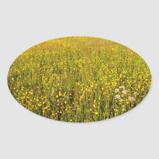 Yellow summer meadow oval sticker