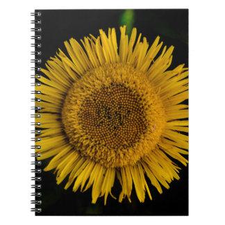 Yellow sun Flower Notebook