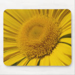 Yellow sun mouse pads