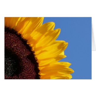 Yellow Sunflower and Blue Sky Card
