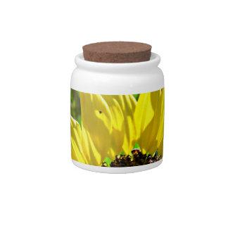 Yellow sunflower candy jar Anti Depression decor