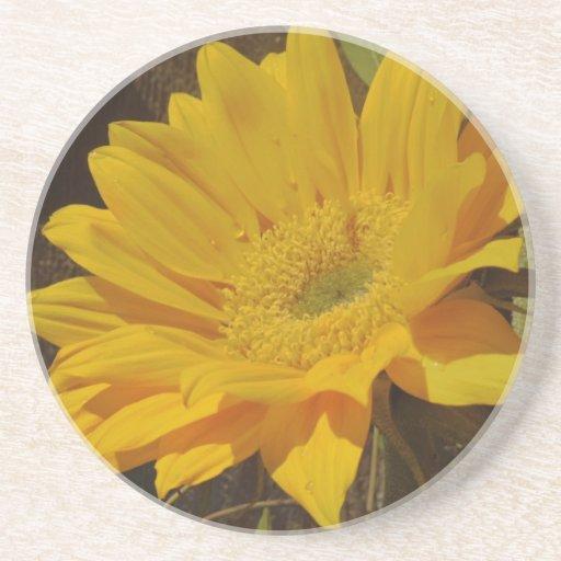 Yellow Sunflower Coaster