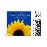 Yellow Sunflower Cobalt Blue Love Blooms Wedding Postage Stamp