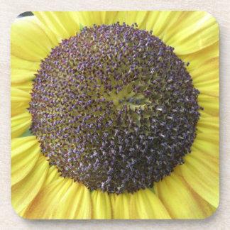 Yellow Sunflower Cork Coaster