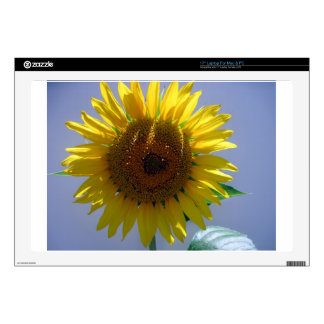 Yellow Sunflower Decals For Laptops
