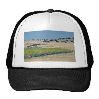 yellow Sunflower field in Portugal flowers Trucker Hats