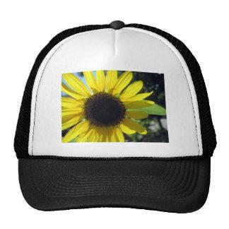 Yellow Sunflower Mesh Hats