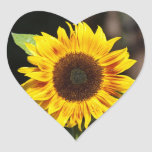 Yellow Sunflower Heart Shaped sticker