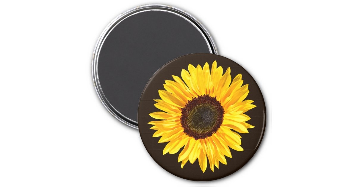 Yellow Sunflower on Chocolate Brown Background Magnet ...