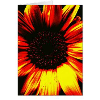 yellow sunflower photograghic art blank card