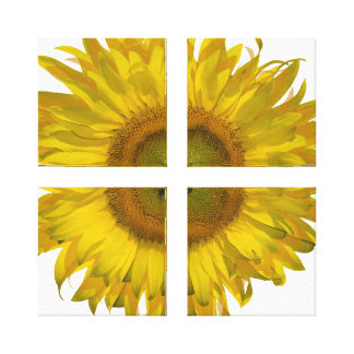 Yellow Sunflower Quad Wrapped Canvas Print