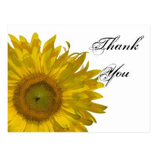 Yellow Sunflower Thank You Postcard