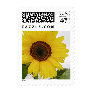 Yellow Sunflower Wedding Stamp