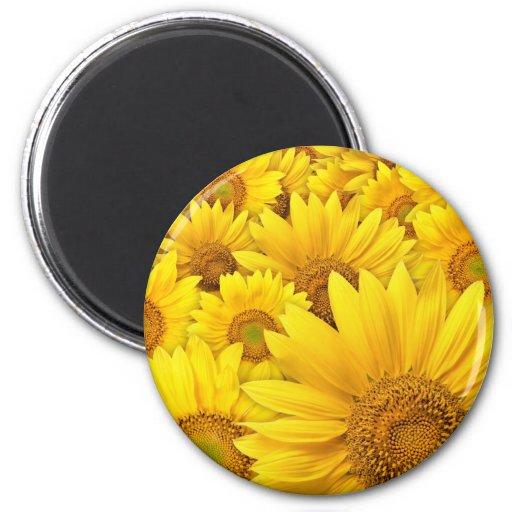 Yellow Sunflowers 2 Inch Round Magnet
