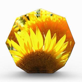 Yellow Sunflowers Acrylic Award