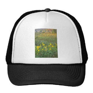 yellow Sunflowers and an autumn field. flowers Mesh Hat