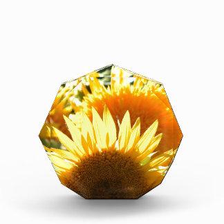 Yellow Sunflowers Award