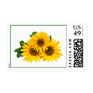Yellow Sunflowers Floral Pattern Postage Stamps
