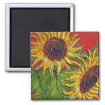 Yellow Sunflowers on Red Refrigerator Magnets