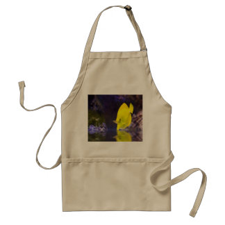 Yellow Surgeon fish looks at it's reflection Adult Apron