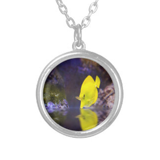 Yellow Surgeon fish looks at it's reflection Silver Plated Necklace