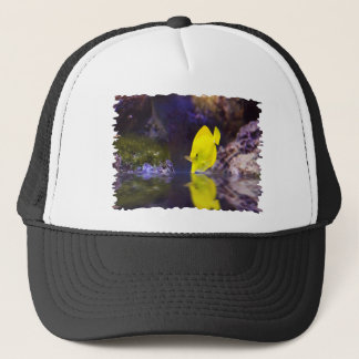 Yellow Surgeon fish looks at it's reflection Trucker Hat