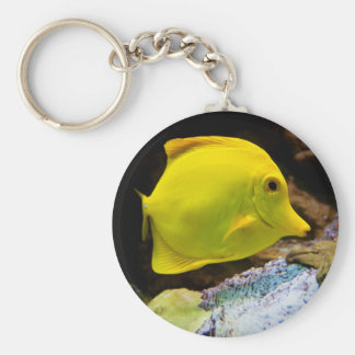 Yellow surgeon keychain