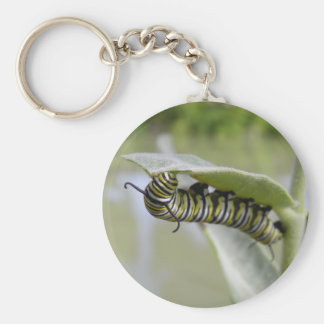 Yellow swallow tail butterfly caterpillar keychain