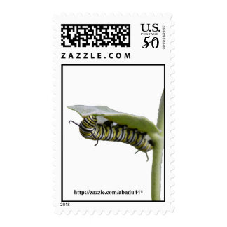 yellow swallow tail catapiller postage