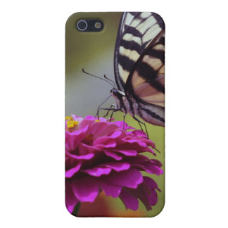 Yellow Swallowtail Butterfly And Zinnia Case For iPhone SE/5/5s