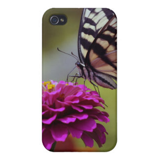 Yellow Swallowtail Butterfly And Zinnia iPhone 4 Case
