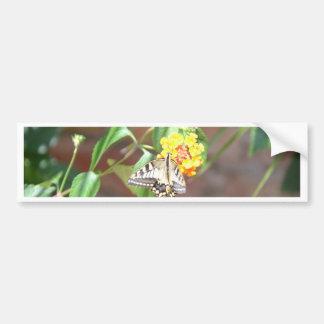 Yellow Swallowtail Butterfly Car Bumper Sticker