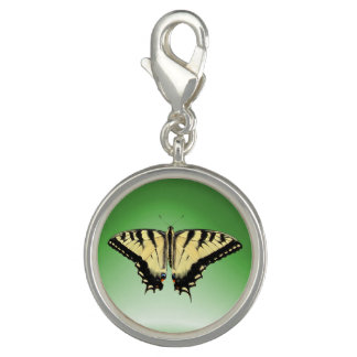 Yellow Swallowtail Butterfly ~ Charm