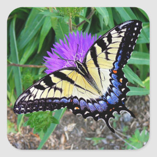 Yellow Swallowtail Butterfly Gift Sticker