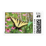 Yellow Swallowtail Butterfly in Summer Garden Stamps