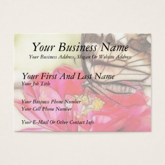 Yellow Swallowtail butterfly on a Zinnia Business Card