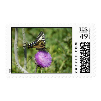 Yellow swallowtail butterfly postage
